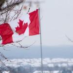 Kanadský dolár na nových maximách. Pomohla aj ropa